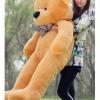 Urs din Plus Mare cu Papion 1,5 M