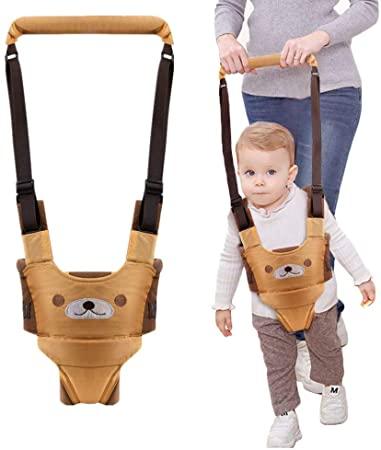 Ham Walk Assistant pentru bebelusi Ursulet 2 in 1