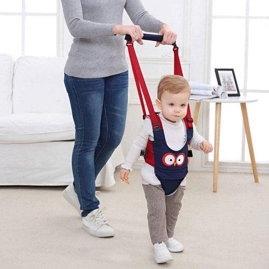 Ham Walk Assistant pentru bebelusi Bufnita 2 in 1